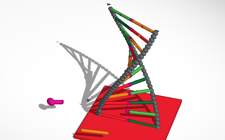 how to make a double helix
