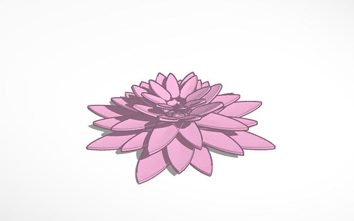 3d Design Lotus Flower Tinkercad